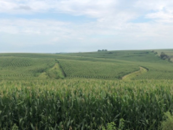 Pending  - 160 Acres Pottawattamie County Iowa