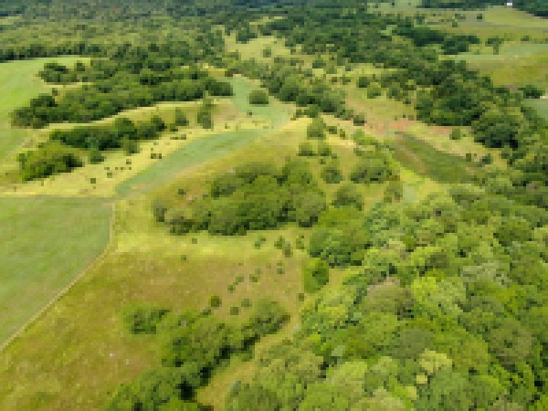 800 Acre Pottawattamie County Iowa Land Auction